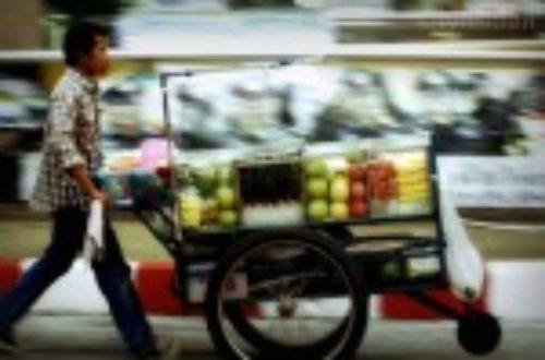 Article : Chômage: le modèle difficilement transposable de la Thaïlande