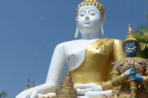 Article : Une matinée au temple
